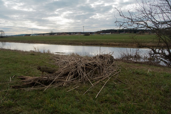 Rückstände nach dem Hochwasser