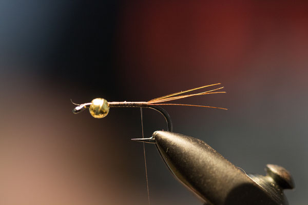 Tie in a few pheasant tail fibers. - Picture: Danica Dudes