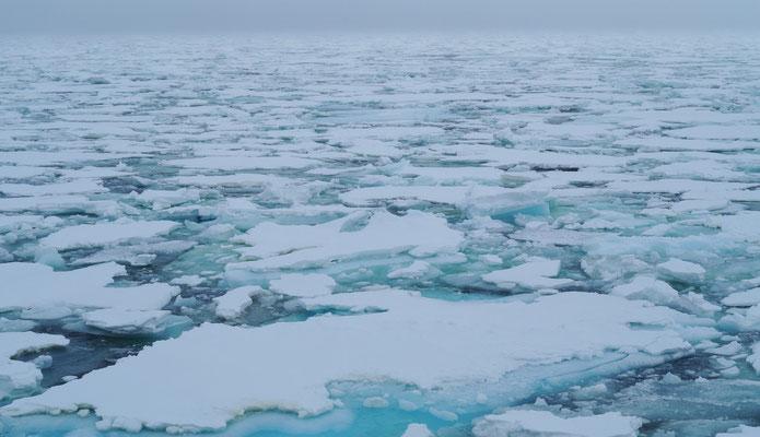 Eindeloze velden ijs!