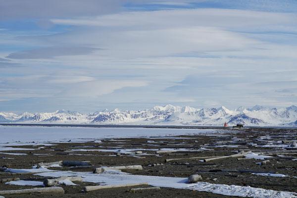 Poolepynten, een bekende rustplek van vele mannelijke Walrussen