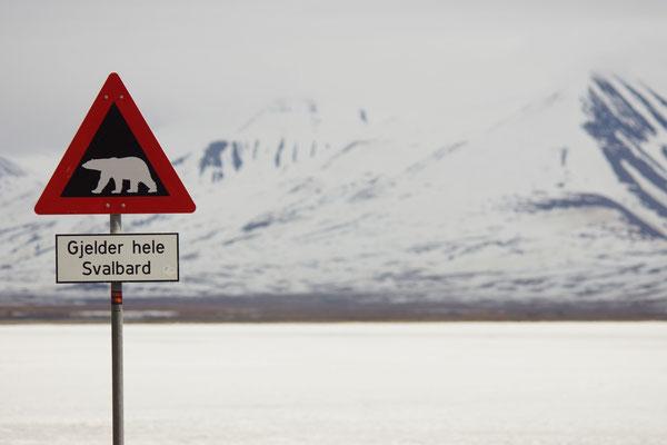 Voorbij dit bord: IJsbeergevaar! Niet zonder geweer dus!