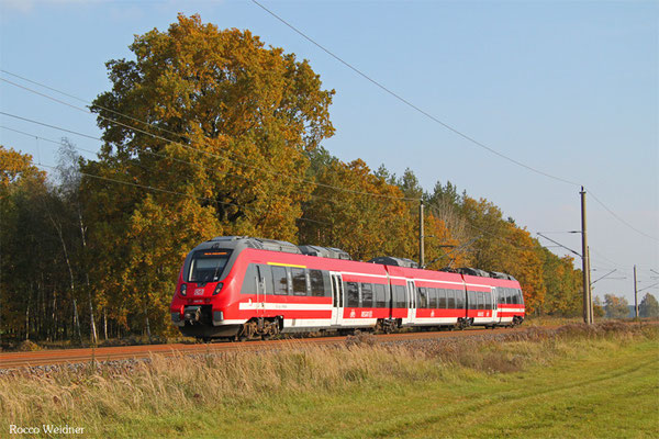 442 151 als RB 28749 Cottbus - Falkenberg(Elster), Beiersdorf 27.10.2015
