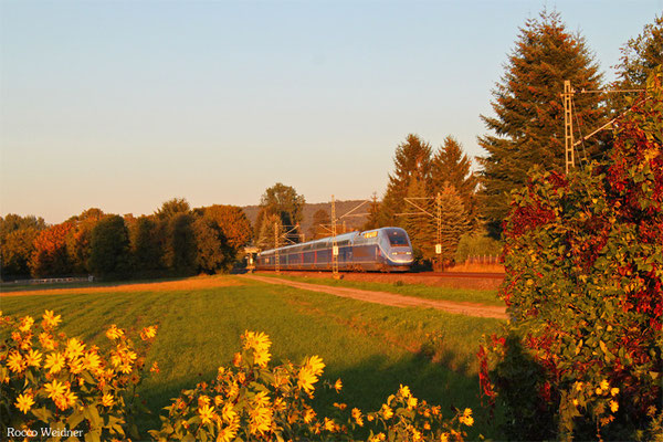 TGV 9552 Frankfurt/M Hbf - Paris Est, Vogelbach 30.09.2015