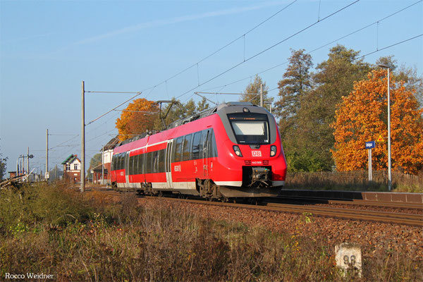 442 006 als RB 28889 Falkenberg(Elster) -Falkenberg(Elster), Uebigau 27.10.2015