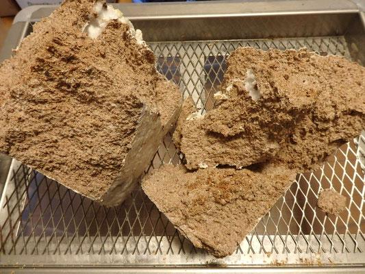 某メーカー菌床:クヌギ×ホダ木 中粒子 ヒラタケ