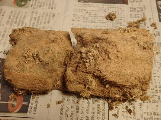 得意のバクテリア材!ほぼカビません^^