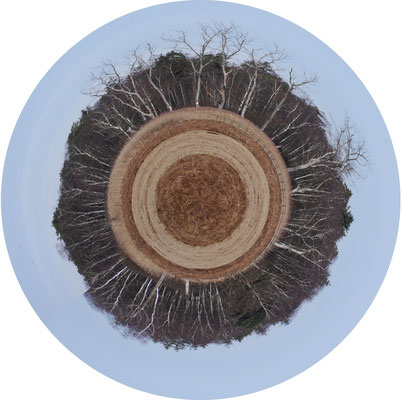 Little Planet Federsee (Thomas)