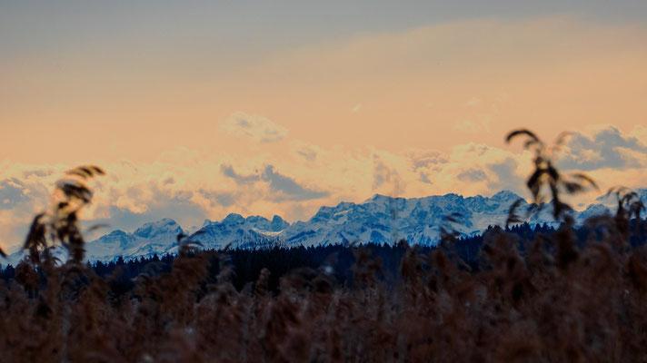 Alpenpanorama bei Föhn (Norbert)