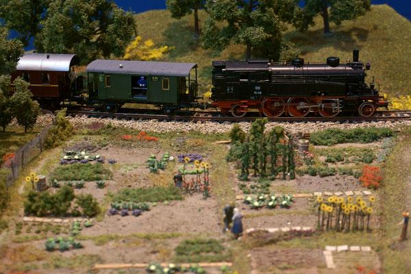 Auch 75 1118 kommt mit ihrem Zug vorbei