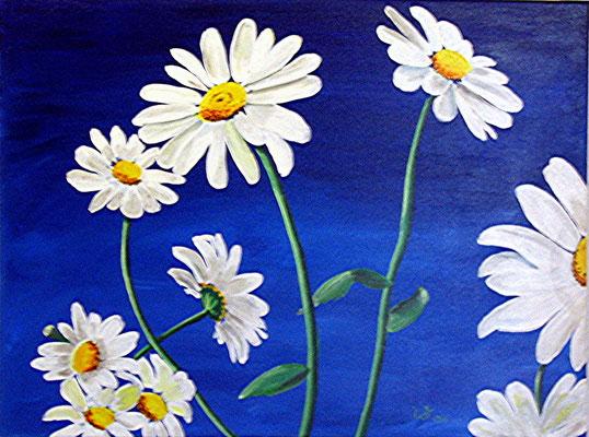 .-. Himmelsblumen