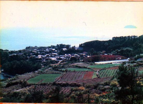 昭和50年ごろの崎の集落  この場所から見渡すと、同じ光景が広がっています ちょっと畑が少なくなったかな~… ここからの景色はなんともいえず郷愁を誘います
