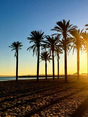 Spanien grüßt mit Sonnenschein in Roses bei Barcelona