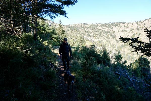 Auf dem Trail in der Sierra de las Nieves