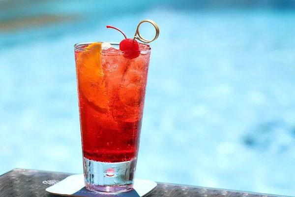 Cocktail-pool-Urlaub-Curacao-Ferienhaus-Karibik-Villapark-Fontein-Drink