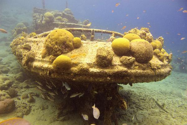 Tug - Boat - Curacao