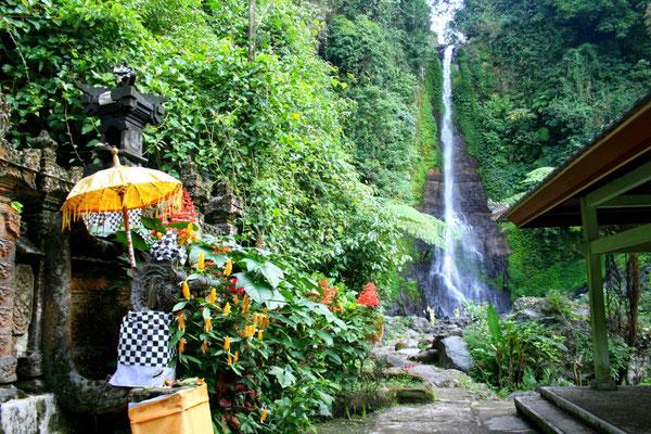 Eine kürzere Route führt nach den Reisterrassen von Jatiluwih und dem Ulun Danu Tempel im Beratan-See zum 35 Meter hohen GitGit Wasserfall. Von hier sind es nur noch 15 Minuten Fahrtzeit nach Lovina.