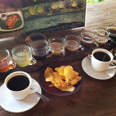 Auf einer Kaffee- und Gewürzplantage gibt es für Dich viel zu entdecken und zu schmecken.