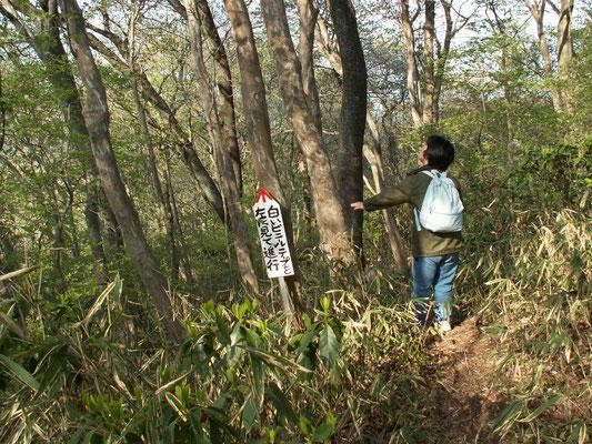 帰り道2 難台山頂から帰り道。親切な案内板。