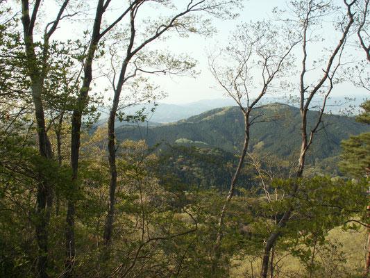 帰り道3 帰り道からの風景。新緑が美しい。