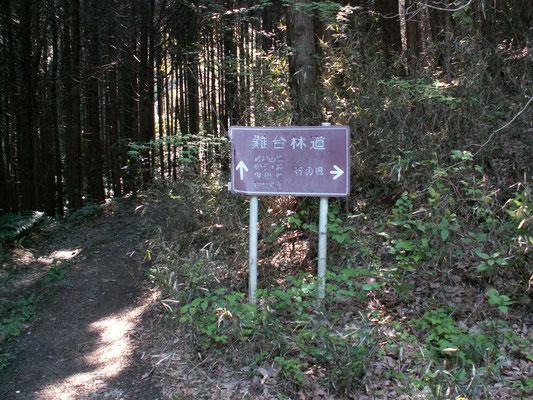 難台城への看板 林道を道なりに登っていきます。