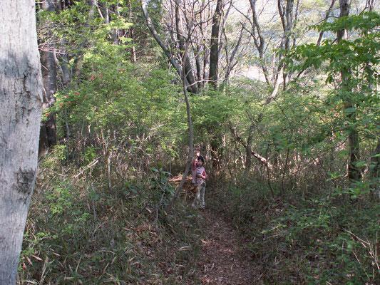 難台城への道3