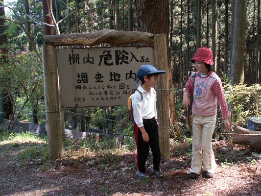 日本植物研究所 首洗いの滝から道がなくなりかまわず、上ると「日本植物研究所」があり再び林道に出ました。