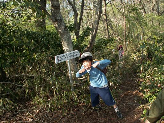 帰り道1 難台山頂から帰り道は難台山東登り口方面へ。