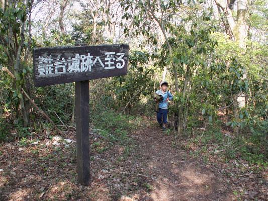難台山頂への道2 ここで、ハイキングコース本道に合流。