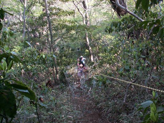 難台山頂への道1 急斜面 ロープをつたわりながら