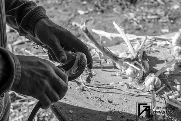 terroir - mains d 'artisan - ©Gilles Auteroche - photographe artisanat - Montpellier - Narbonne - Béziers - Carcassonne - Perpignan