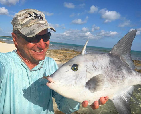 FFTC.club - Fly fishing Bahamas - Crooked and Acklins ISLAND - Trigger Fish