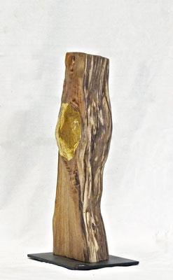 AMAZONE (profil)