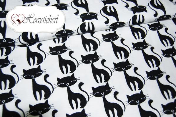 Katzen / Weiß-Schwarz