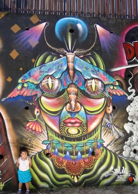 """Mujeriposa"" Graffiti by Shalak. Cerro Polanco, Valparaiso, Chile.  Feb 2013"