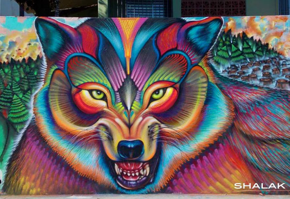 """Loba. Wolf""  Mural by Shalak (3m x 7m) Sao Paulo, Brazil. June 2013  (Rua Parapua com a Macedonia, Brasilandia, zona Norte)"