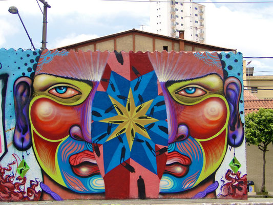 """""""O individualismo que nos Separa""""...  Graffiti by Shalak and Sapiens.  Sao Paulo, Brazil. 2013"""