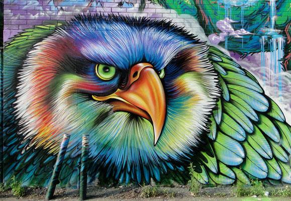 """""""Eagle"""" detail by Shalak, Montreal, Quebec. June 2013  (Rachel & Rue Hotel-de-Ville)"""