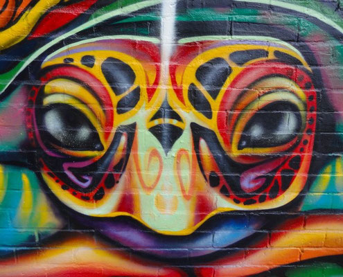 """""""Turtle Island"""" Detail of mural by Shalak.  Hochelaga, Montreal, Canada.  2011 (Rue Lafontaine & Rue Dezery)"""