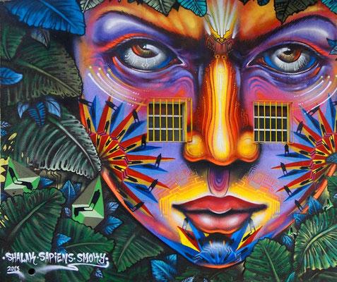 """Aborigen Urbano""  Mural by Shalak, Smoky, Sapiens.  Sao Paulo, Brazil. Feb 2013   (Rua Ipiranga com rua Araujo, Centro)"