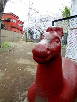 馬さん良い笑顔