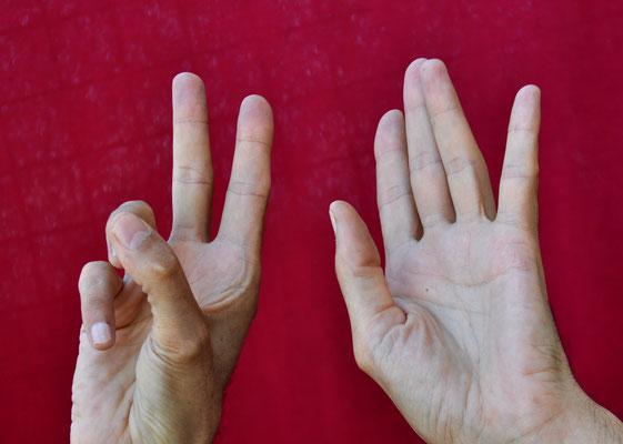 Parler avec les mains