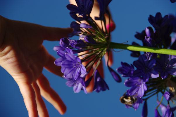 La nature à portée de(ux) mains