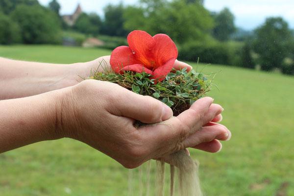 Le monde entre nos mains (Les mains représentent la Terre qui est la vie de tout être vivant et si l'espèce humaine continue à la détruire elle finira comme le sable qui tombe)