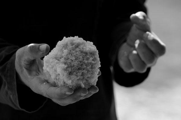 Le sel de la terre