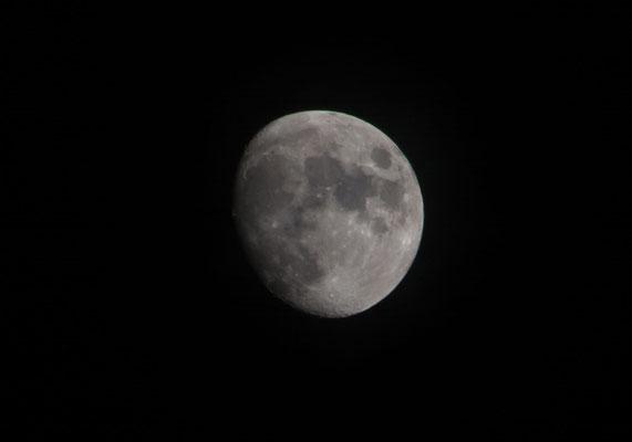 Mond am 12.01.2014