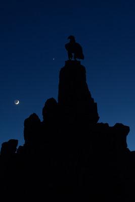 21.04.215 Mond, Venus und Aldebaran