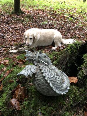 Zwei Wächter des Schatzes