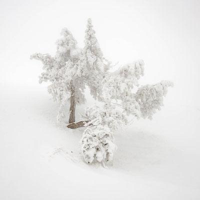 Les pics ceints de neiges