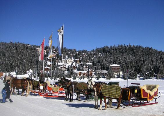 Skiurlaub Graubünden - Arosa bester Skiort Graubünden für Ferien polysportiv