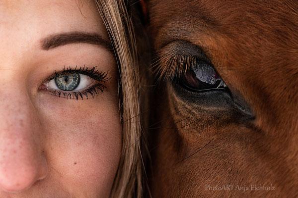 Pferdefotografie Weilheim Murnau Starnberg München Garmisch Pferdefotograf Pferdeshooting Pferdefotograf